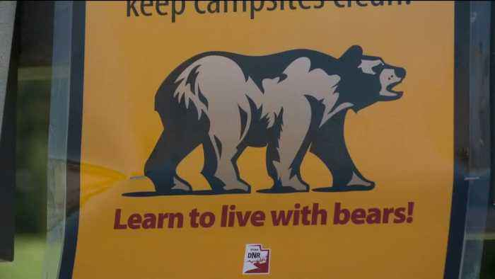 Utah Rangers Issue Warning After Black Bear Allegedly Charges at Hikers