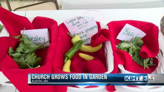 Church Hands Out Healthy Food Options To Families