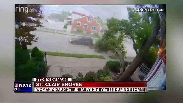 Wind takes down large tree onto home in St. Clair Shores