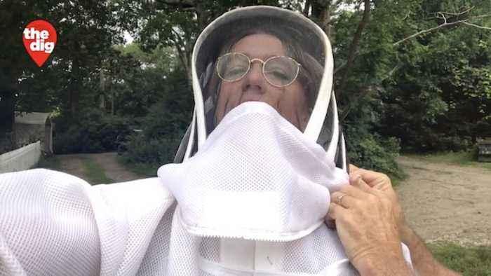 Backyard Honey: Long Island Beekeeper Keeps It Local