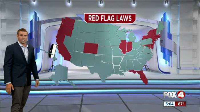 """Trump called for the passage of """"Red Flag Laws"""""""