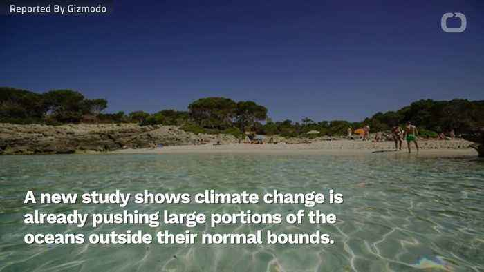 Ocean Heat Waves Are Becoming More Common