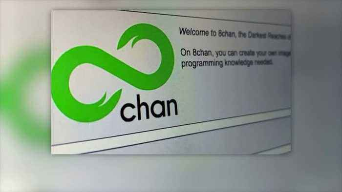'It's Sort of Like Cockroaches': Shutting Down 8chan Won't Stop Dangerous Users, Expert Says