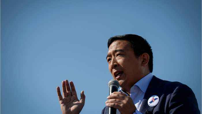 Tesla CEO Elon Musk Supports Andrew Yang