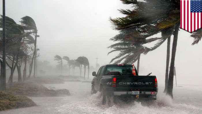 End of El Nino may lead to more active Atlantic hurricane season