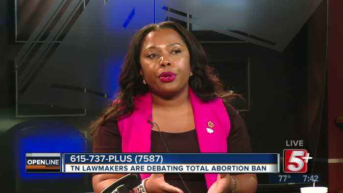 TN Lawmakers Debate Total Abortion Ban p4
