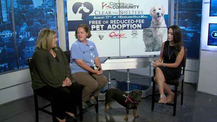 Clear the Shelters SPCA