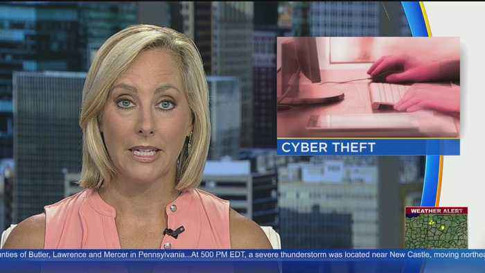 Former Employee Accused Of Stealing From Pittsburgh Cyber Security Firm