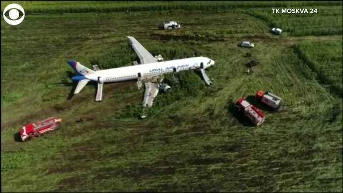 WEB EXTRA: Emergency Plane Landing In Field