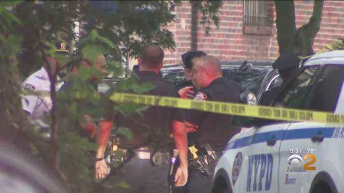 NYPD Reeling After 9th Suicide This Year