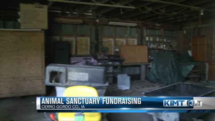 Fundraising For The Glady Mae Animal Sanctuary