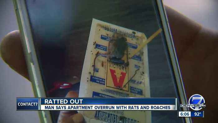 Contact7 investigates a roach and rodent 'infestation' at Denver apartment complex