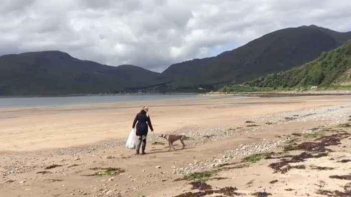INTELLIGENT WEIMARANER CRACKS DOWN ON PLASTIC POLLUTION ACROSS UK BEACHES IN BID TO HELP OWNERS