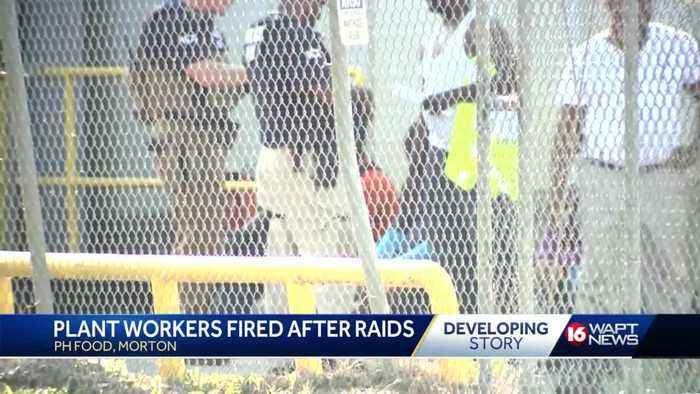 Plant fires workers after immigration raids