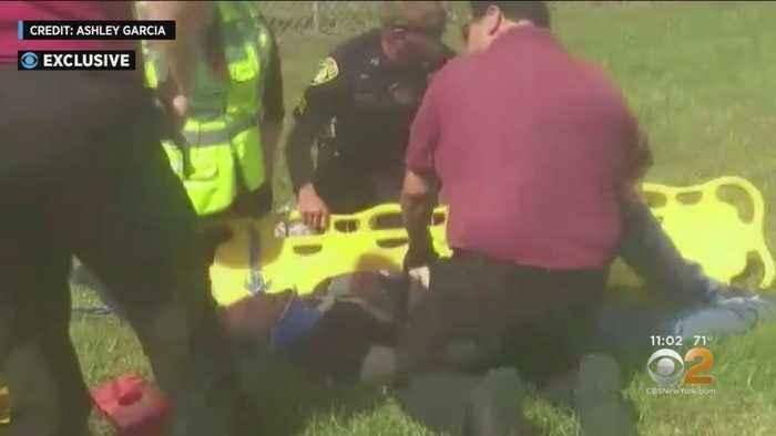 Dale Earnhardt Jr. And Family Survives Plane Crash