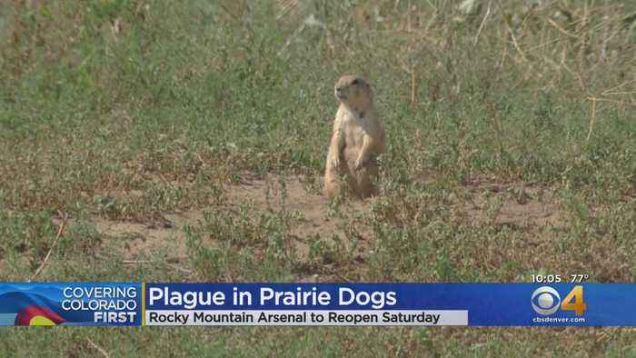 Rocky Mountain Wildlife Refuge To Reopen After Plague