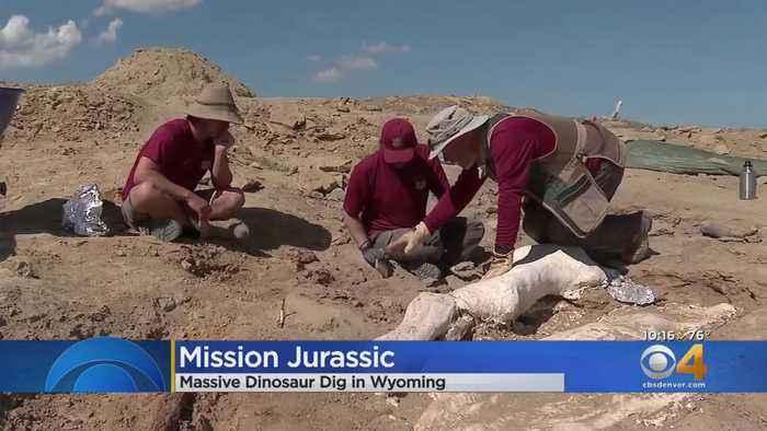 'Mission Jurassic' Dino Dig Underway In Wyoming