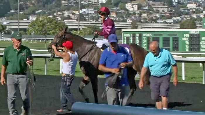 Racing at Golden Gate Fields Begins Under Cloud from Recent Horse Deaths