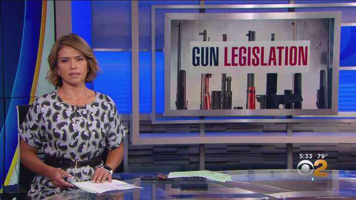 House Committee To End Recess Early To Work On Gun Bills