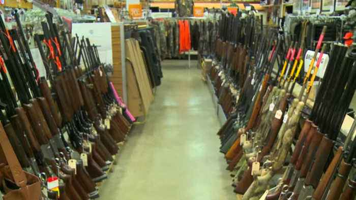 Wisconsin Democratic legislators introduce bill to close background check loophole