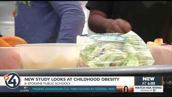 New study links children's neighborhood to obesity
