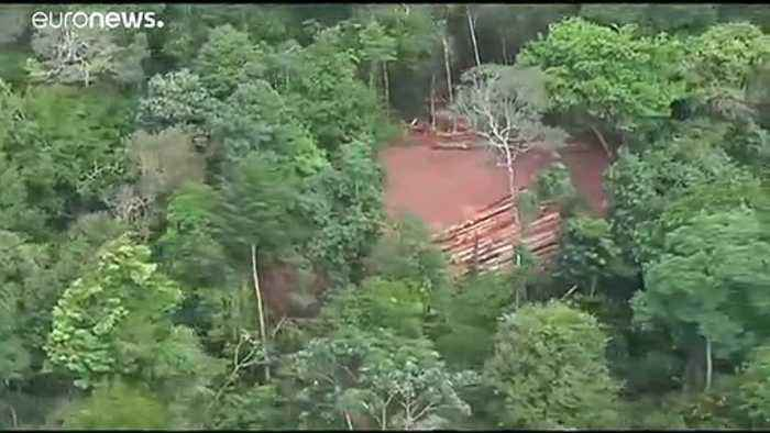 Brazilian government defends record on Amazon deforestation