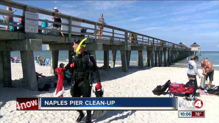 Divers volunteer to clean up debris under the Naples Pier
