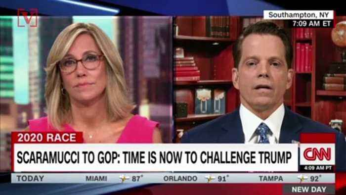 'The Mooch' Says He's Forming a Team of Former Trump Officials to Speak Out Against The President