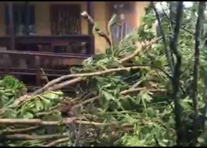 Clean Up Underway After Cyclone Trevor Batters Queensland Town