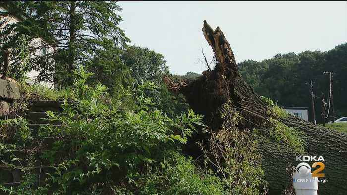 Cleanup Efforts In Millvale And Lawrenceville Begin Following Microburst