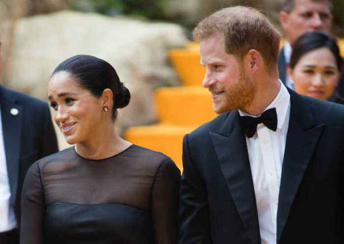 UK Politician Criticizes Harry and Meghan Over Use of Private Jet