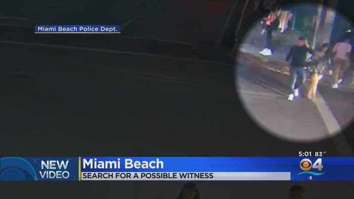 Do You Recognize This Woman? Miami Beach Think She May Have Information About a Deadly Hit and Run