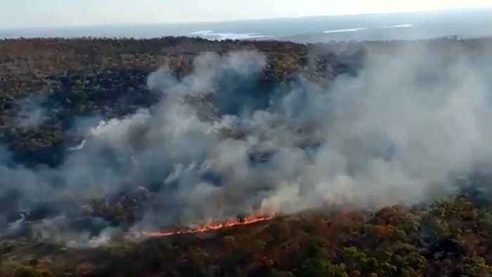 Amazon Wildfires Spark Global Concern, Outrage