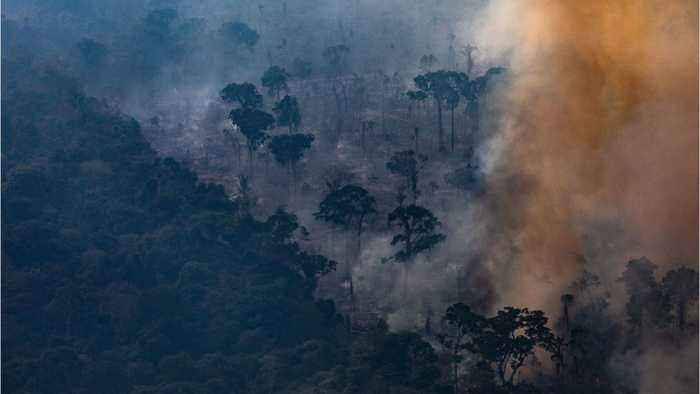 Brazil Deploys Troops to Fight Amazon Rainforest Wildfires
