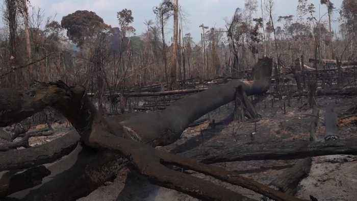 Soldiers join in Amazon firefighting effort