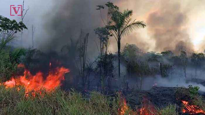 NASA Satellite Images Show Africa's Congo Basin Has More Fires Than Amazon