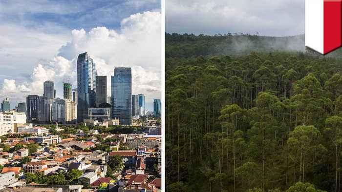 Indonesia plans to relocate capital city to Borneo island