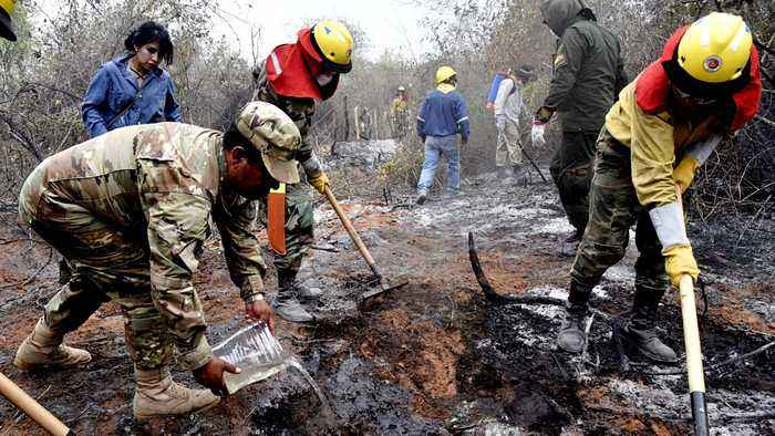 Amazon fires: Soldiers join volunteers to battle fire