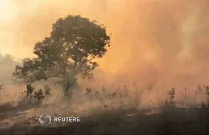 Brazilian farmer 'can't keep up' with the fires