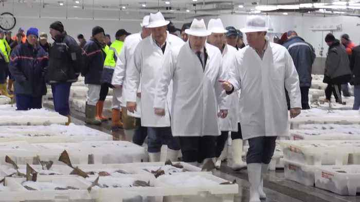 Boris Johnson overpays for box of cod during fish market visit