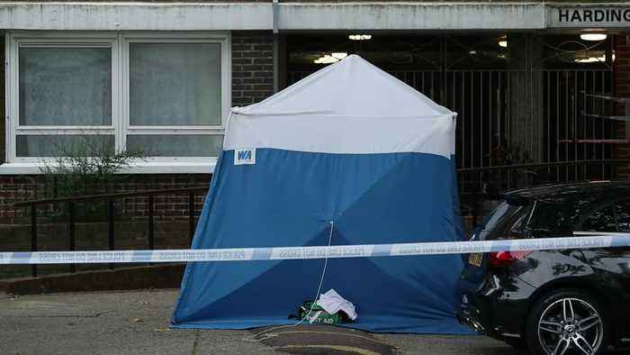 Woman arrested over fatal Chalk Farm attack
