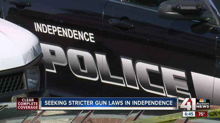 Democrats Press Gop For Stricter Gun Laws Video: With New Gun Squad And Stricter Ordinances,