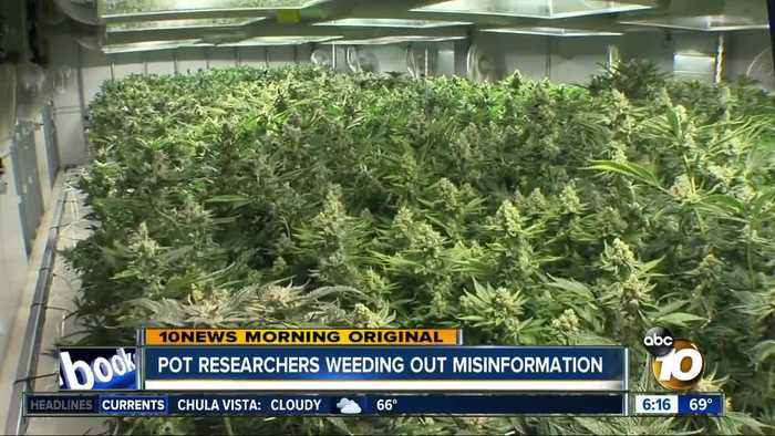 San Diego schools look to take mystery and misinformation out of medical marijuana