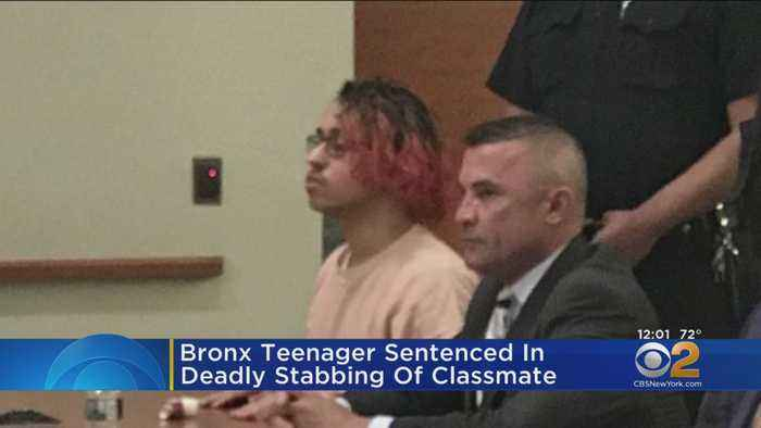 Bronx Teen Sentenced To 14 Years For Stabbing Classmate To Death, Wounding Another