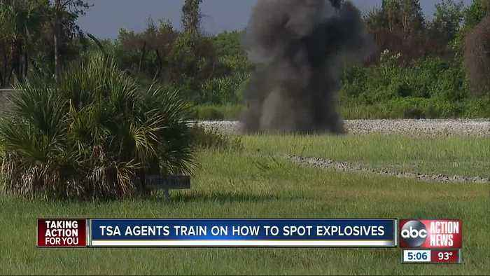 TSA officers train at MacDill on how to spot explosive devices