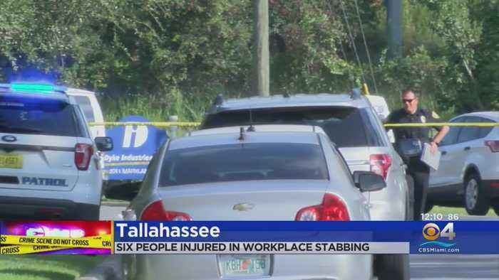 Multiple People Stabbed In Tallahassee