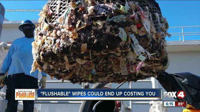 'Flushable' wipes aren't flushable, and they're causing thousands of dollars in damage
