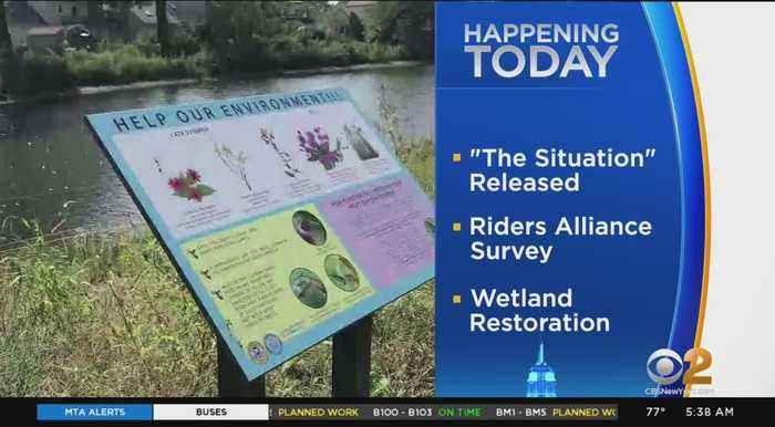 Valley Stream Wetland Restoration Opens Today