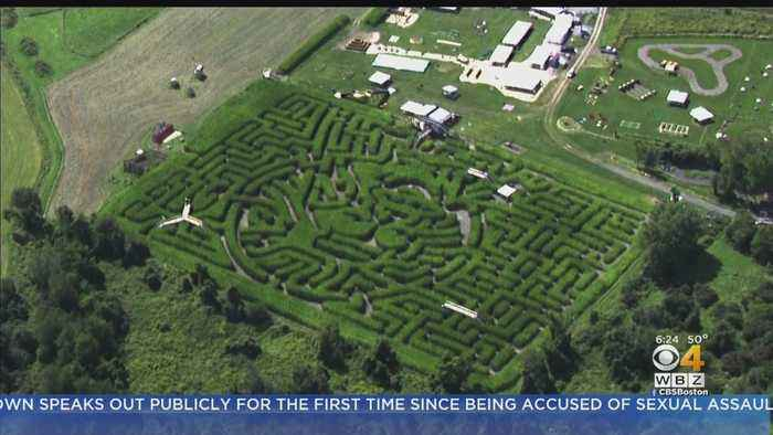 It Happens Here: Sterling's Mega Corn Maze