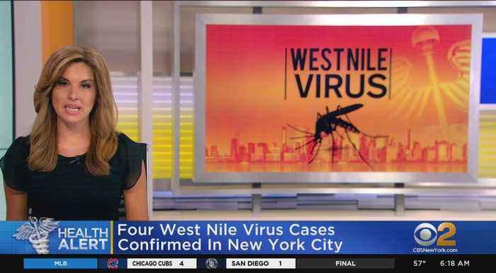 West Nile Virus Confirmed In NYC